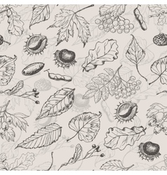 Autumn seamless pattern with leaves and seeds vector image