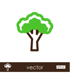 broccoli outline icon vegetable vector image vector image
