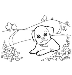Coloring book with dogs and house vector