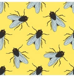 Seamless pattern with fly Musca domestica hand vector image vector image
