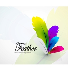 Color feathers abstract background vector