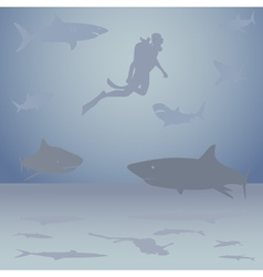 Diver among sharks vector image