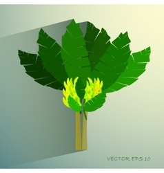 Ecological concept a beautiful tropical banana vector