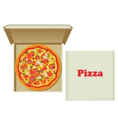 pizza in box vector image