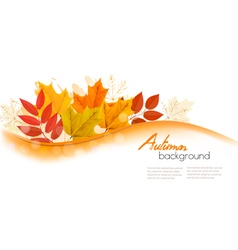Autumn nature background with colorful leaves vector