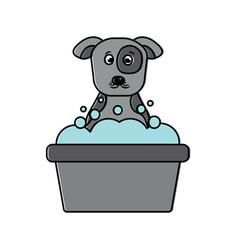 Cartoon dog bathing foam clean vector