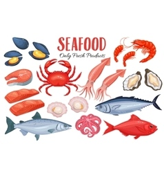 Seafood in cartoon style vector