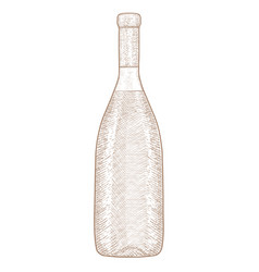 Bottle of wine hand drawn sketch vector