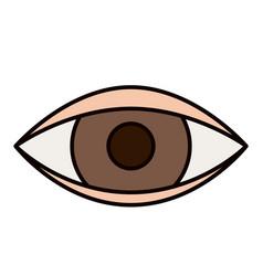 Color sketch silhouette eye symbol browser vector