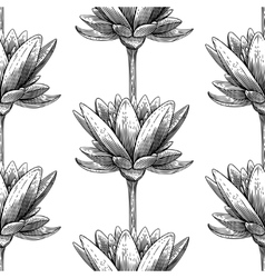 Engraved lotus vector image vector image