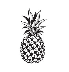 image of pineapple fruit vector image vector image