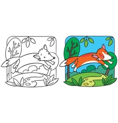 Little red fox coloring book vector image
