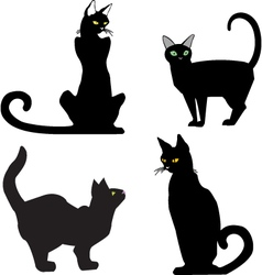 Blackcats vector