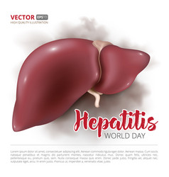Postcard or banner to the world hepatitis day vector