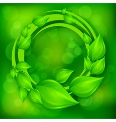 Green leaves wreath on green vector
