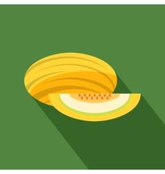 Melon icon vector