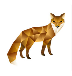 polygonal of fox vector image vector image