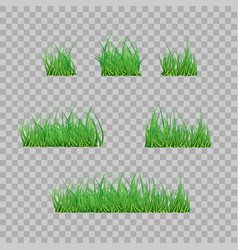 Set green grass borders vector