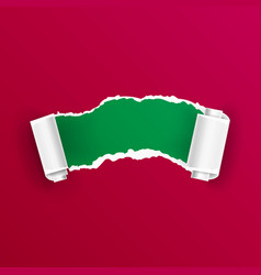 Torn paper with curls  realistic paper hole vector