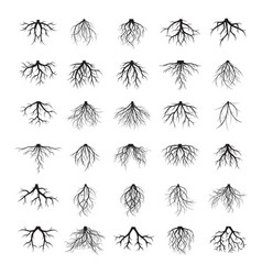 big set of black roots vector image