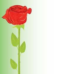 Rose and copy space vector