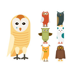 Cartoon owl bird cute character sleep sweet owlet vector
