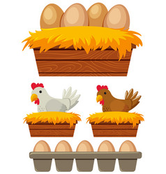 Chicken and eggs in the nest vector