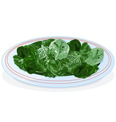 Plate of spinach vector image vector image
