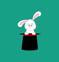 Rabbit in magic hat vector
