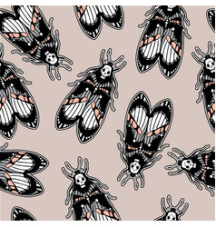 Seamless pattern with moth dead head retro style vector