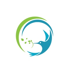 Hummingbird logo template icon vector