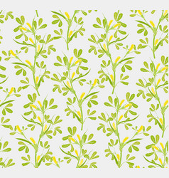 Floral seamless pattern with flowering fenugreek vector