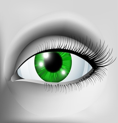 Green eye vector image vector image