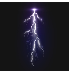 New realistic lightning sign vector image