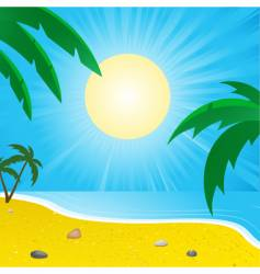 summer beach and palm trees vector image