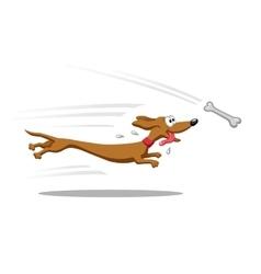 Dachshund running for bone vector image