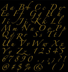 Golden handwritten alphabet numbers and signs on vector