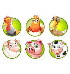 Farm animals on green badges vector image vector image