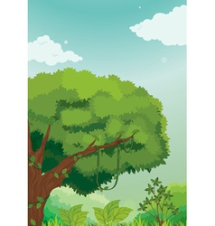 jungle scene vector image vector image