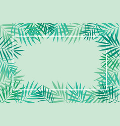 tropical palm leaves background with frame vector image