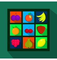 Fruits and berries flat icons with long shadow vector