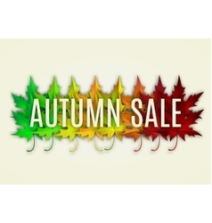 Fall sale design vector
