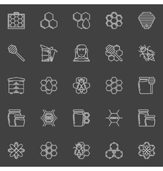 Apiary linear icons vector