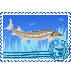 Postage stamp sturgeon vector