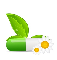 Herbal pill iconEnvironment background vector image