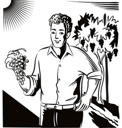 Young man holding a bunch of ripe grapes just vector