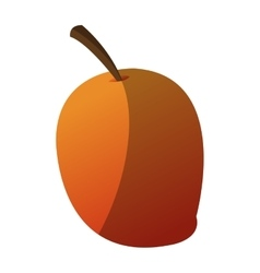 Isolated mango design vector