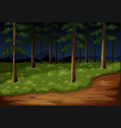 forest scene with trees and trail at night vector image