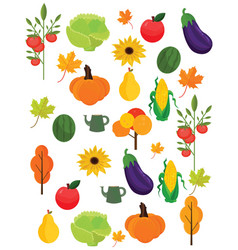 vegetables harvest autumn season pattern vector image vector image