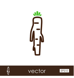 Horseradish outline icon vegetable root vector
